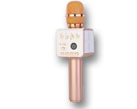 Zipal Z-10 Беспроводной караоке микрофон с колонкой