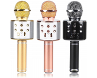 Wster WS-858 Беспроводной караоке микрофон