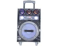 Активная акустическая система ВК-1000 (ВК-1001)